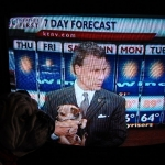Frank checks out pooch on daily news